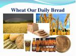wheat our daily bread