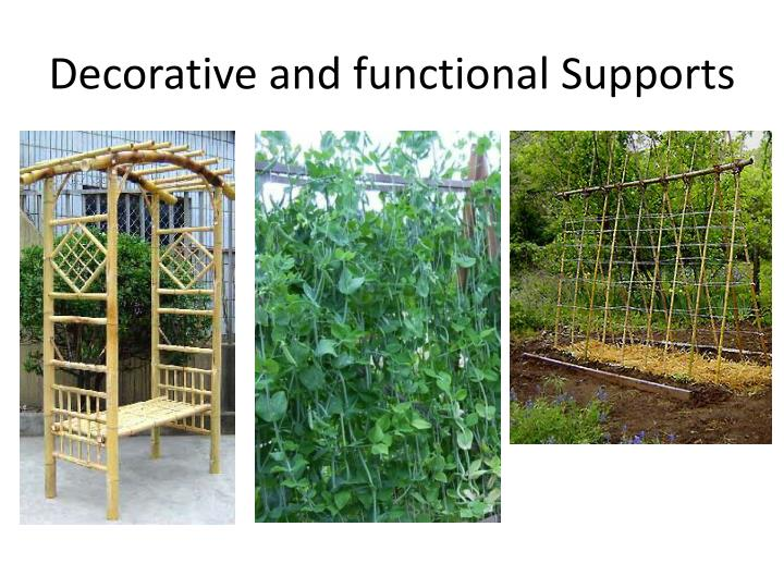 Decorative and functional Supports