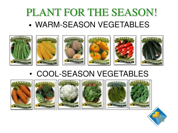PLANT FOR THE SEASON!