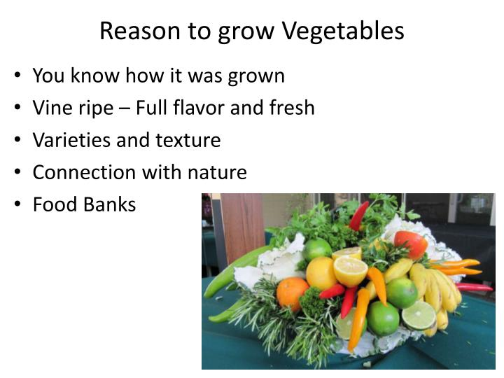 Reason to grow Vegetables