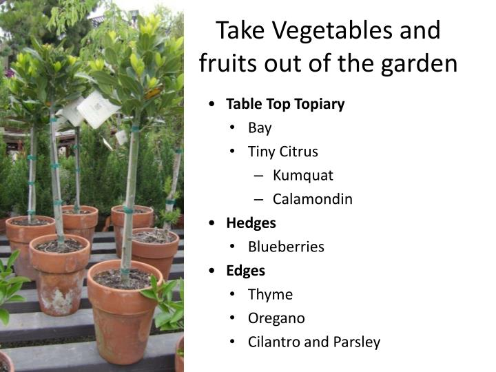 Take Vegetables and fruits out of the garden