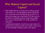 why human capital and social capital