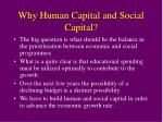 why human capital and social capital1