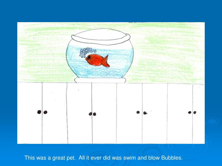 This was a great pet.  All it ever did was swim and blow Bubbles.
