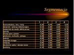 segmentacja3