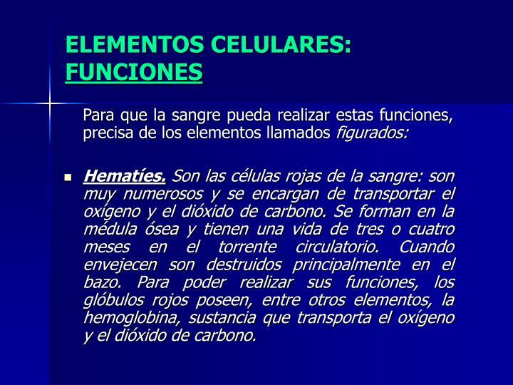 ELEMENTOS CELULARES: