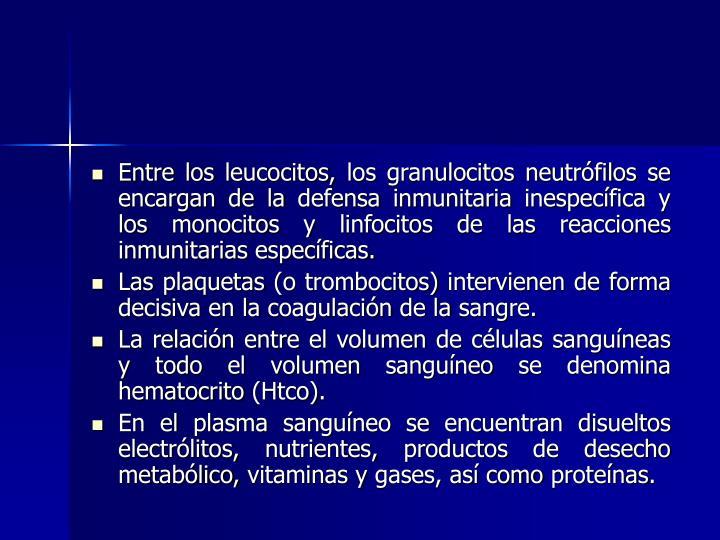 Entre los leucocitos, los granulocitos neutrófilos se encargan de la defensa inmunitaria inespecífica y los monocitos y linfocitos de las reacciones inmunitarias específicas.