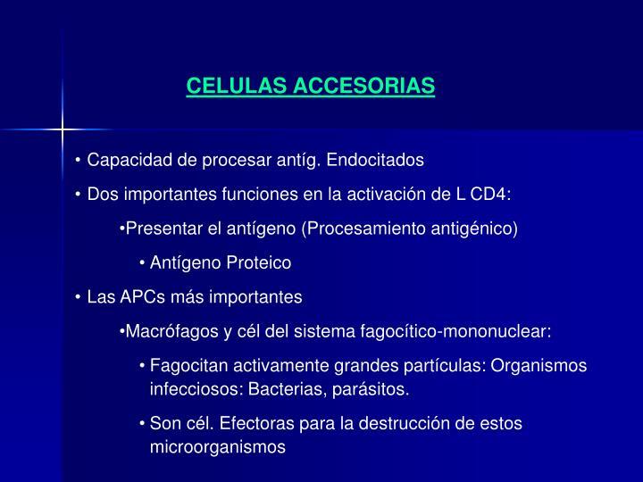 CELULAS ACCESORIAS