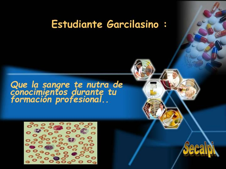 Estudiante Garcilasino :