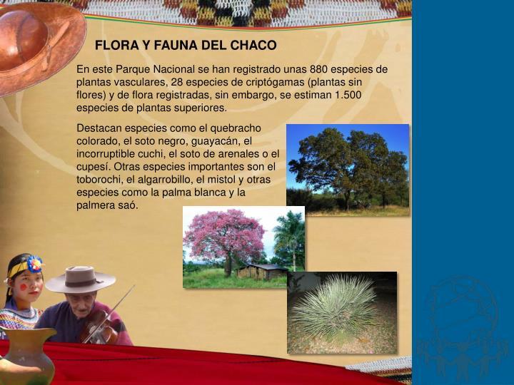 FLORA Y FAUNA DEL CHACO