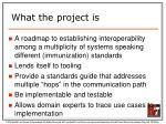what the project is