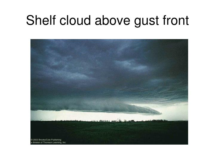 Shelf cloud above gust front