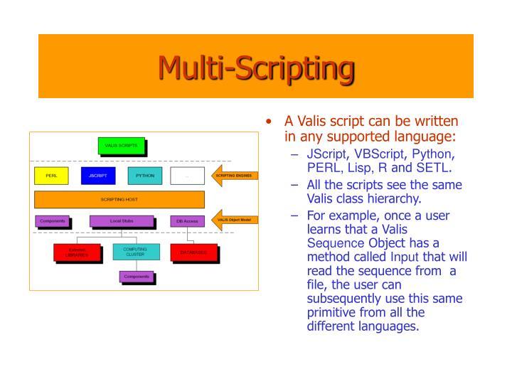 Multi-Scripting