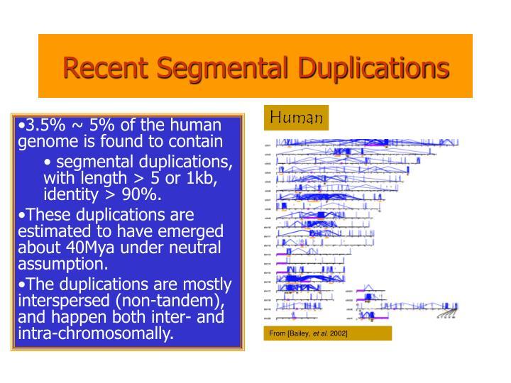 Recent Segmental Duplications