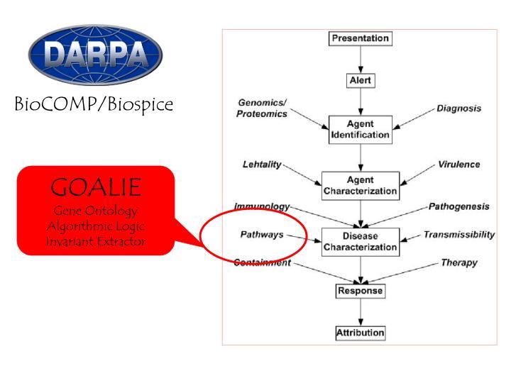 BioCOMP/Biospice