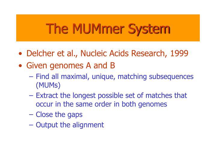 The MUMmer System