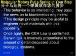 molecular motors put a spring in your step3