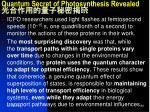 quantum secret of photosynthesis revealed3