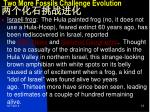 two more fossils challenge evolution1