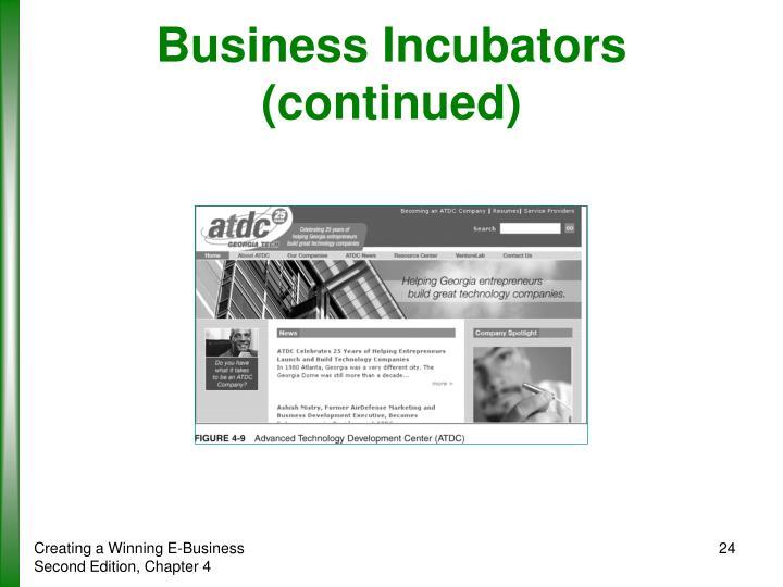 Business Incubators (continued)