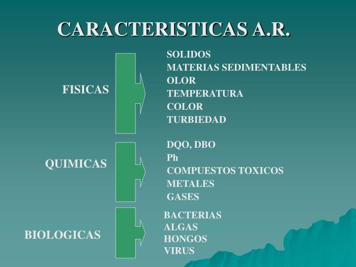 CARACTERISTICAS A.R.