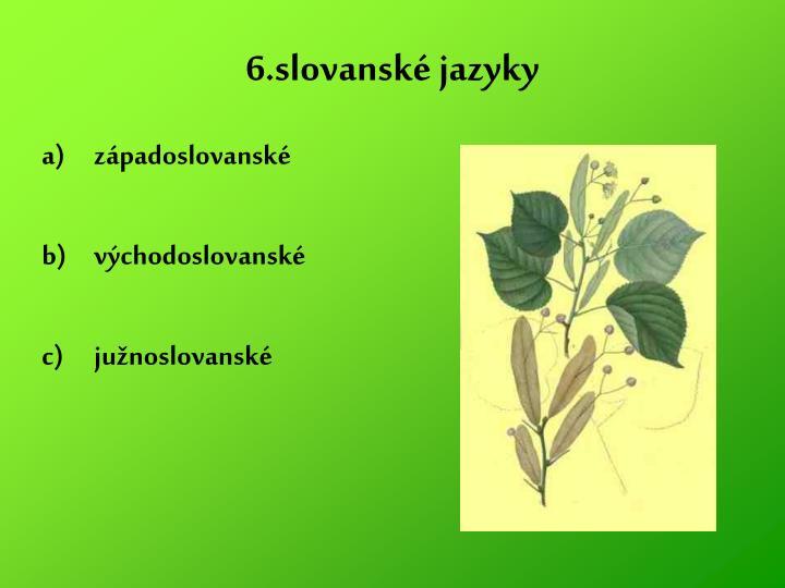 6.slovanské jazyky