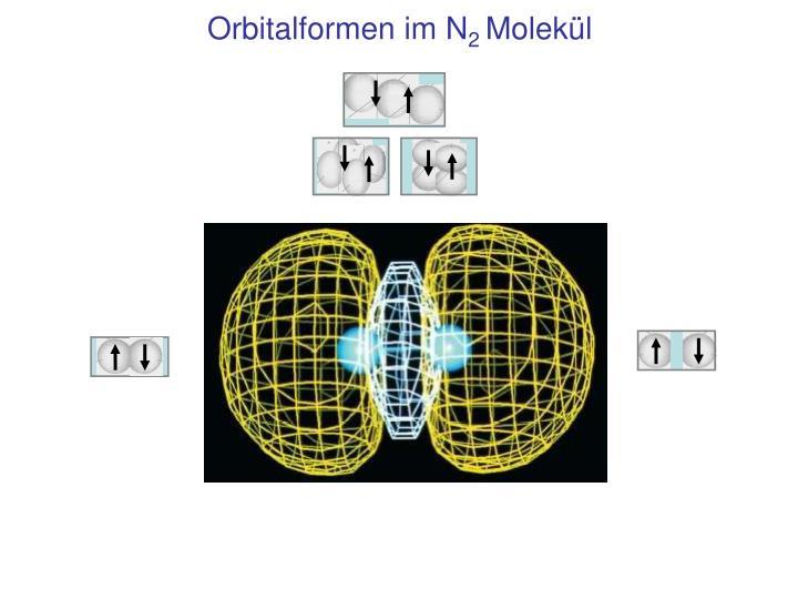 Orbitalformen im N