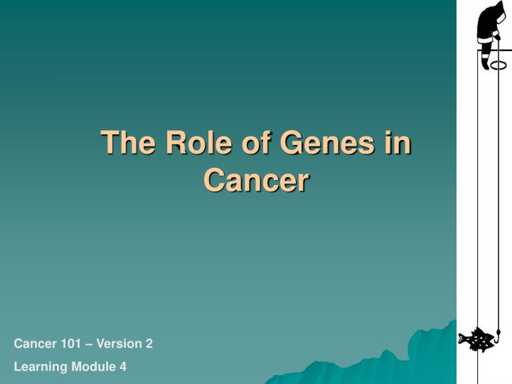 The role of genes in cancer