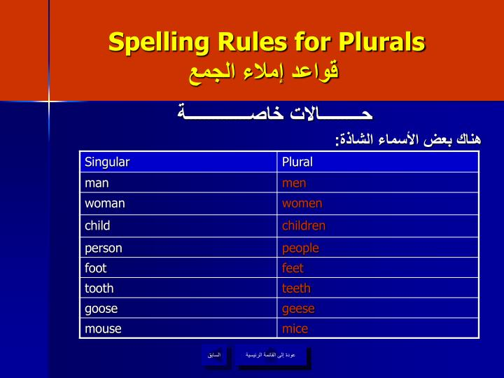 Spelling Rules for Plurals