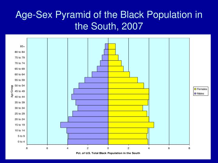 Age-Sex Pyramid of the Black Population in the South, 2007