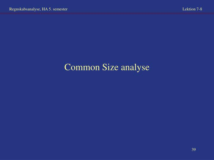 Common Size analyse