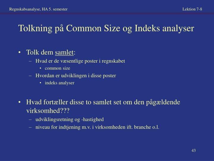 Tolkning på Common Size og Indeks analyser