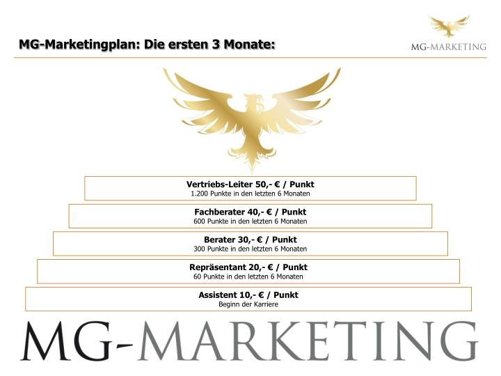 MG-Marketingplan: Die ersten 3 Monate: