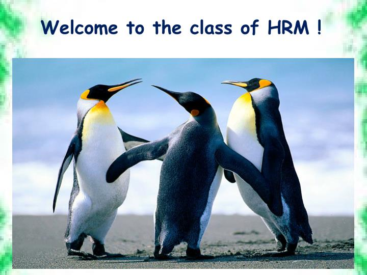 welcome to the class of hrm n.