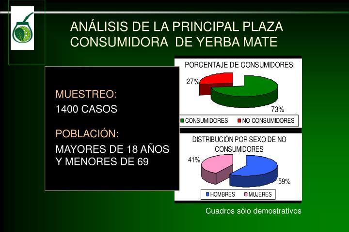 ANÁLISIS DE LA PRINCIPAL PLAZA CONSUMIDORA  DE YERBA MATE