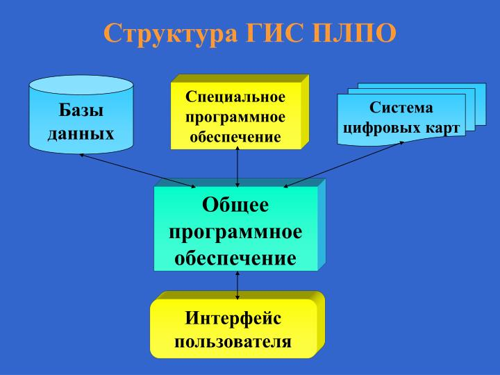 Структура ГИС ПЛПО