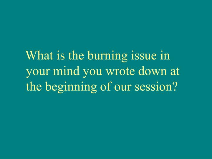 What is the burning issue in your mind you wrote down at the beginning of our session?