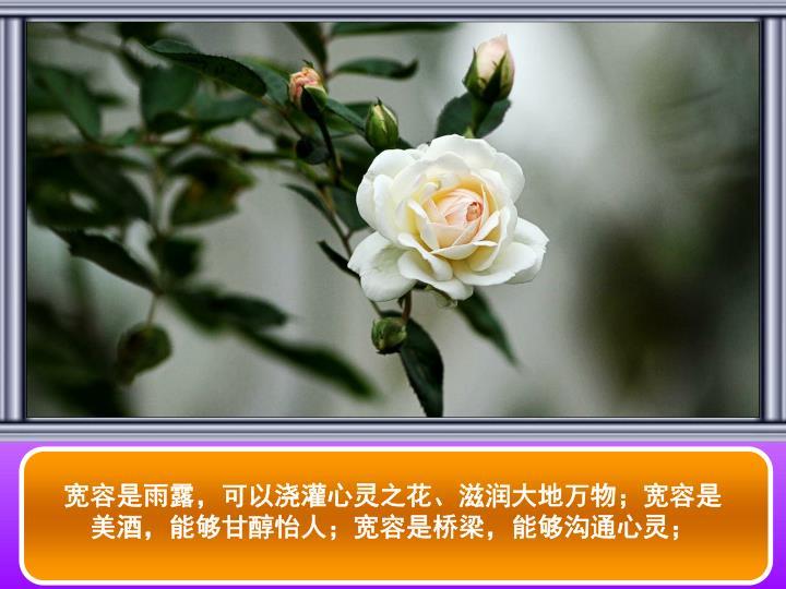 宽容是雨露,可以浇灌心灵之花、滋润大地万物;宽容是美酒,能够甘醇怡人;宽容是桥梁,能够沟通心灵;