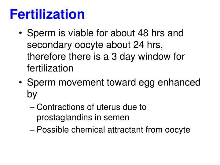 Opinion prostaglandins in sperm something is