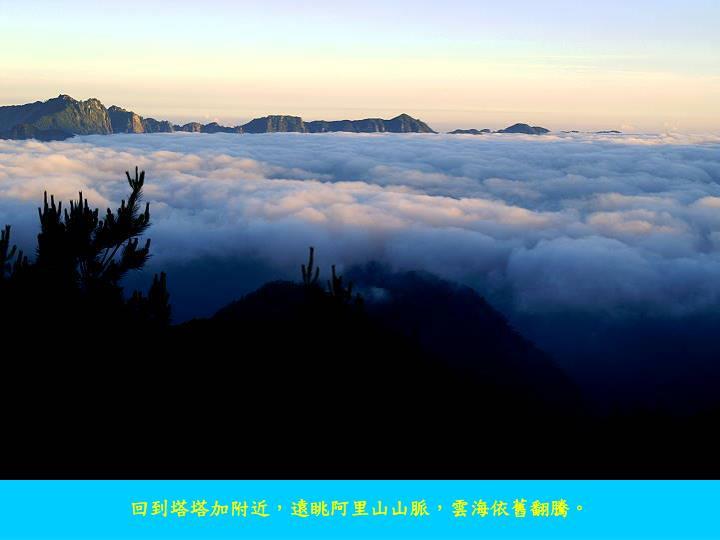 回到塔塔加附近,遠眺阿里山山脈,雲海依舊翻騰。