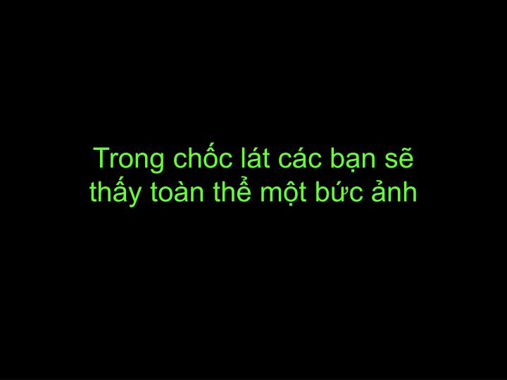 Trong ch c l t c c b n s th y to n th m t b c nh