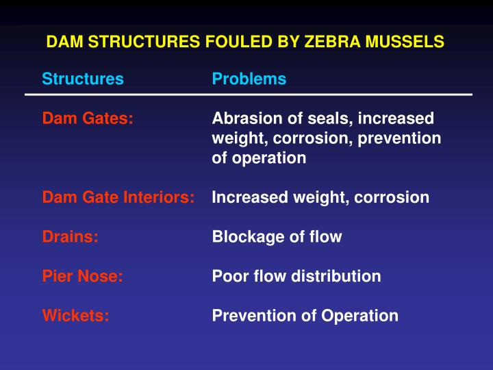 DAM STRUCTURES FOULED BY ZEBRA MUSSELS
