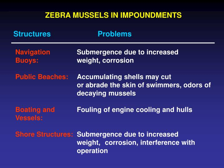 ZEBRA MUSSELS IN IMPOUNDMENTS