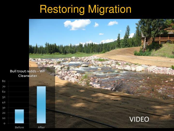 Restoring Migration