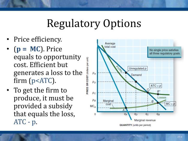 Regulatory Options