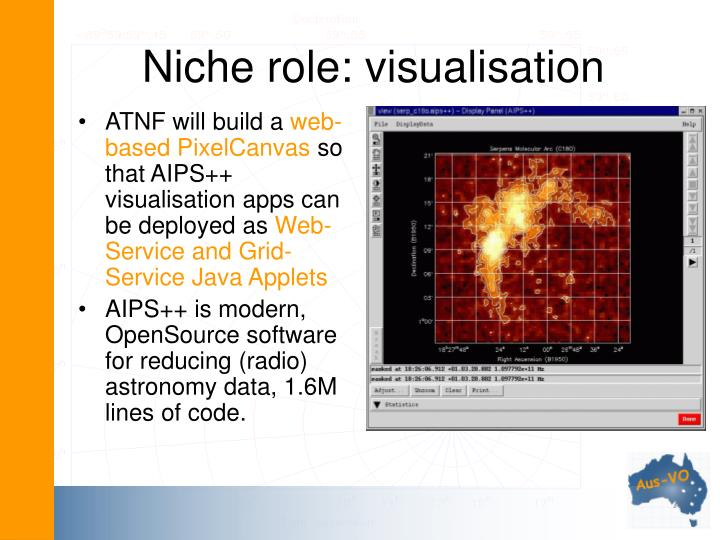 Niche role: visualisation