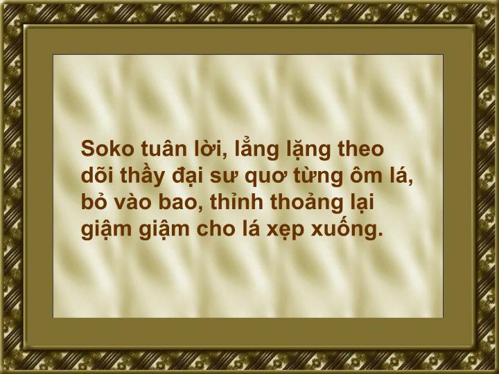 Soko tuân lời, lẳng lặng theo dõi thầy đại sư quơ từng ôm lá, bỏ vào bao, thỉnh thoảng lại giậm giậm cho lá xẹp xuống.
