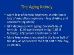 the aging kidney