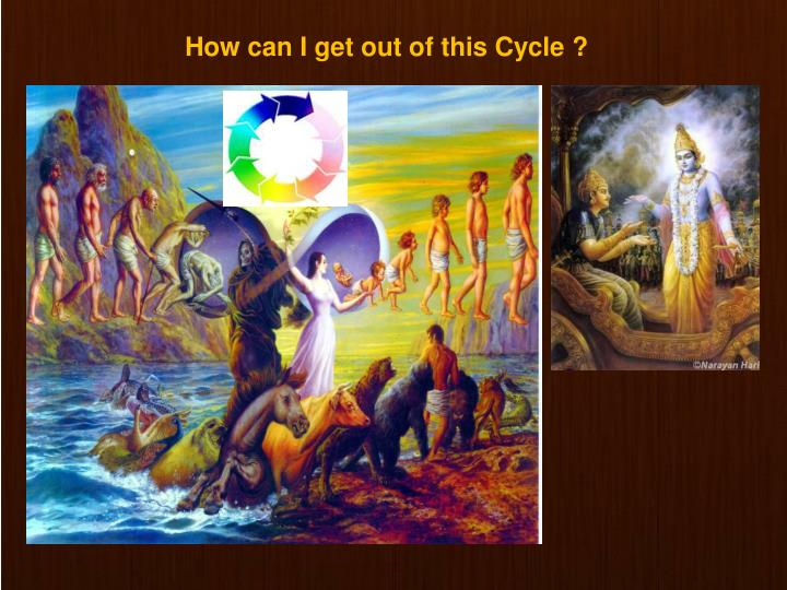 How can I get out of this Cycle ?