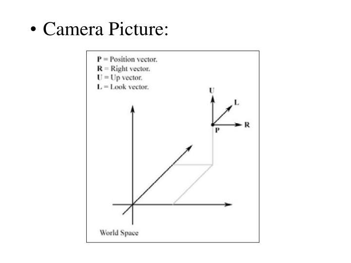 Camera Picture: